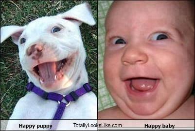 Deux beaux sourires pour le prix d'un