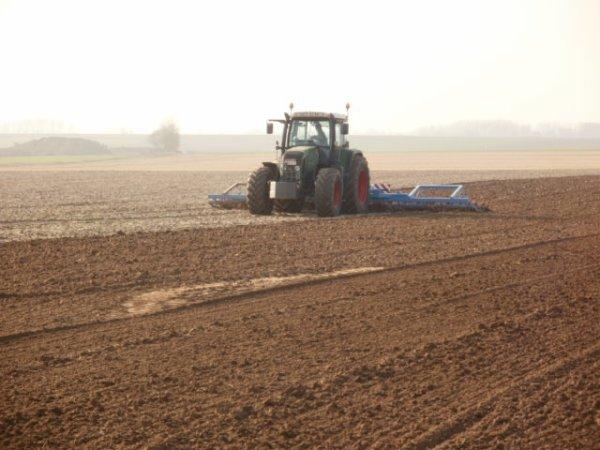 preparation des terre pour chicon