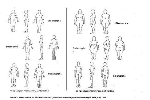 Physique et Psychologie : la morphologie - Cyrilou21000