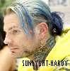 SUNLIGHT-Hardy