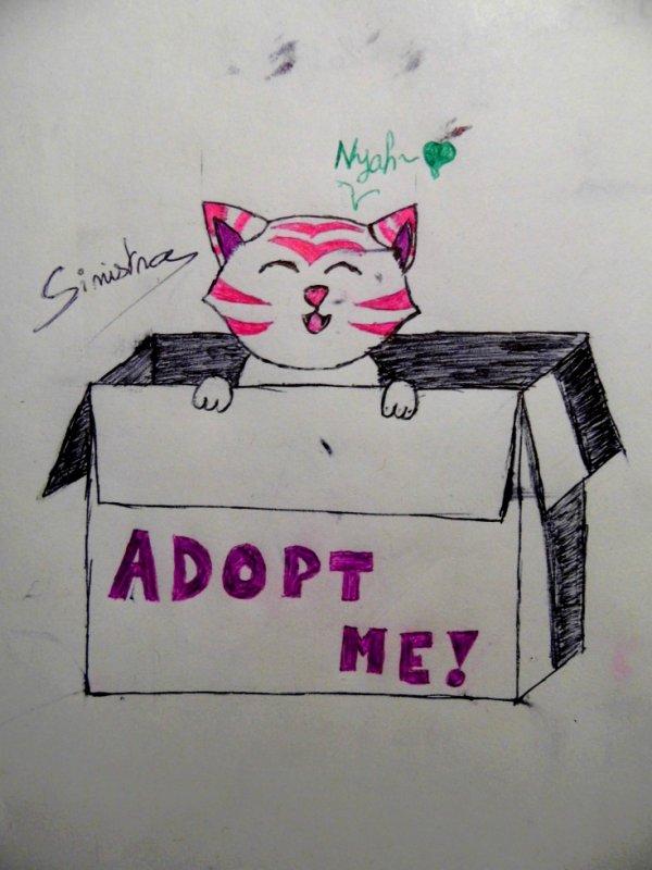 Adopt me!
