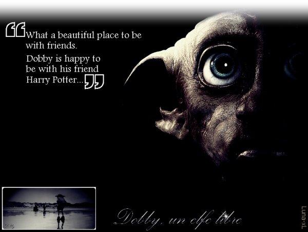 On dit que tout va bien, mais Dobby il est mort...