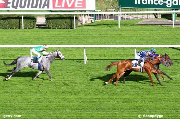 mardi 29 octobred saint cloud 18 chevaux plat - 1600 mètres
