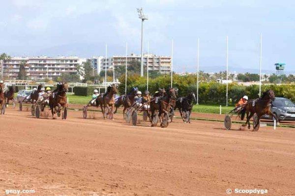 vendredi 3 mars 2017 cagnes-sur-mer trot attelé 15 chevaux mon choix  13 11 7 1 10  arrivée 5 12 14 10 1