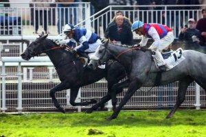 cagnes-sur-mer haies 3500 mètres avec 16 chevaux résultat de cette course 6  2  3  15  8