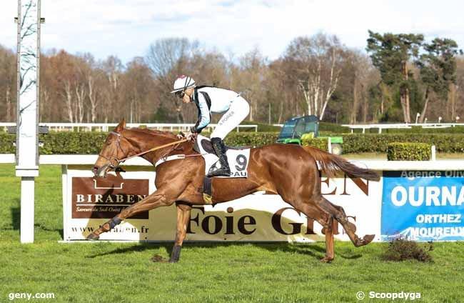 pau haies mercredi 19 - 17 chevaux résultat 9 2 7 11 10