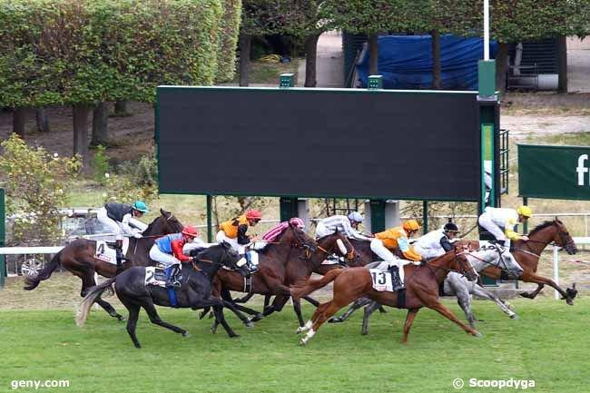 dimanche 30 juin 2019 saint cloud 16 chevaux quinté de plat mon choix 1 4 11 ......arrivée 12 1 13 6 5