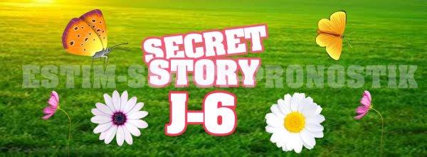 Secret Story 5 J-13 !
