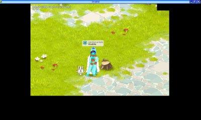 Mes personnages de Dofus et leurs familiers différents (Jeux sur Internet = MMORPG)
