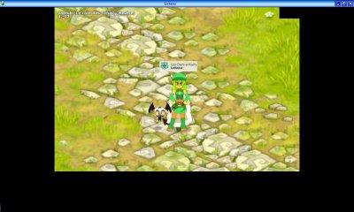 Mes personnages de Dofus et leurs familiers différents (Jeux sur Internet = MMORPG) [La suite]