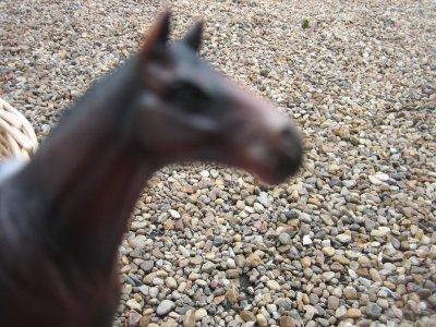 Présentation de mes chevaux schleich :