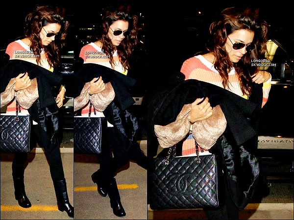 .04/04/13 : Eva a été vue à l'aéroport « LAX » n'oubliant pas son coussin fétiche pour un vol direction New-York..