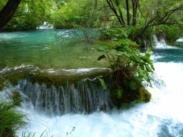 Paysages magnifiques: les lacs de Plitvice en Croatie