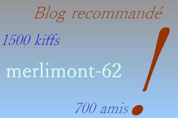 Blog recommandé