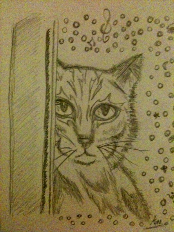 chat,crayon papier,d etente