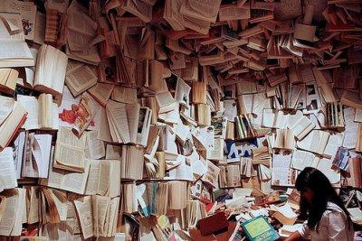 Liste des livres que je dois absolument me procurer et lire !