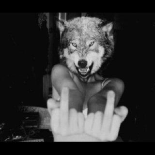Blog de Smile-l0ve