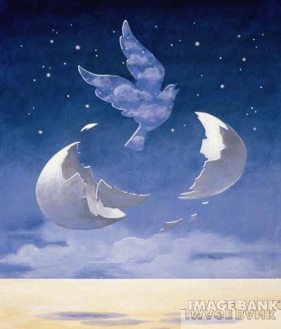 a notre ange Mélissa decedée le 12.12.2005 à la naissance recherche témoignages