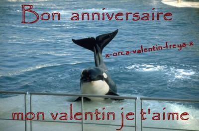 Bon Anniversaire Valentin X Orca Valentin Freya X