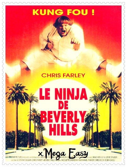 . __LE NiNJA DE BEVERLY HiLS  .