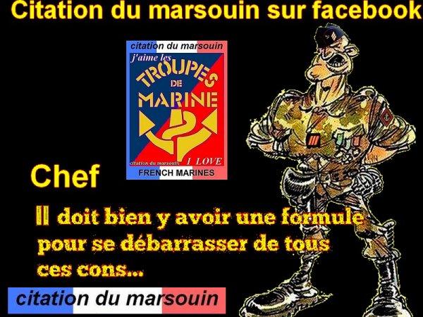 citation-du-marsouin sur facebook