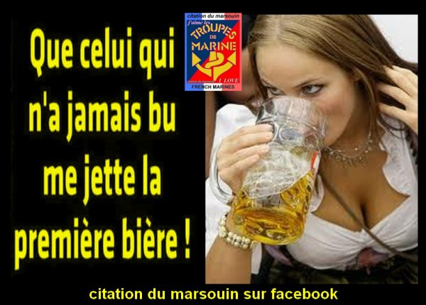 citation-du-marsouin sur facebook