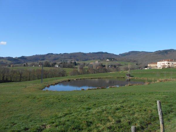 Monts du Lyonnais : premiers cols de l'année (20/02/2014)