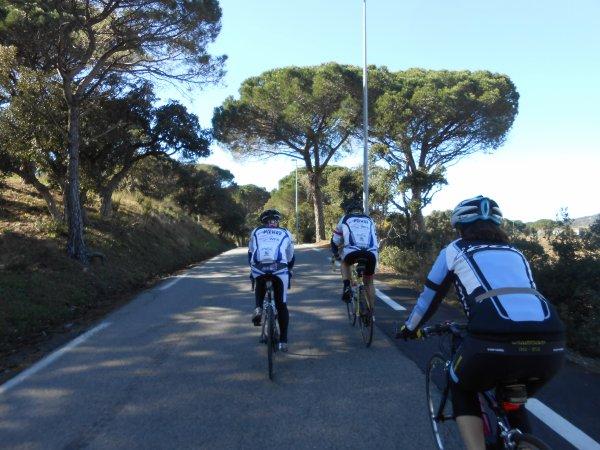 Sur les routes du Tour du Haut Var (22/02/2014)