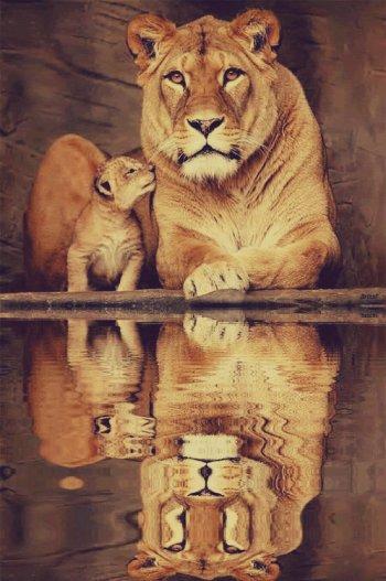 Christian le lion