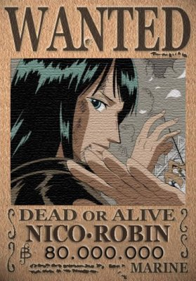 wanted robin