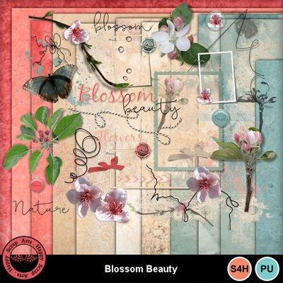 Publicité scrapamitiés suite ( Blossom beauty)