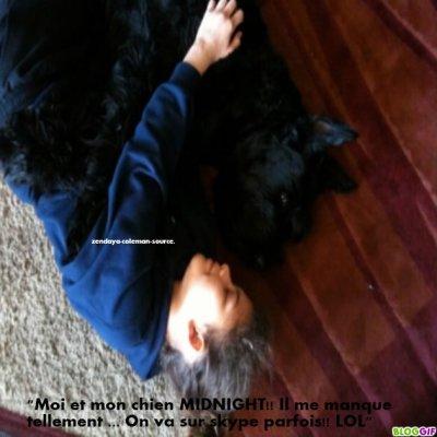 Nouvelle phto de Zendaya et de son chien MIDNIGHT .