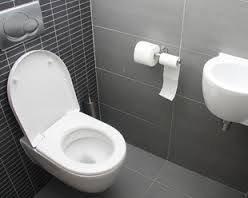 Urgence plombier paris 11: Comment déboucher efficacement vos WC ?