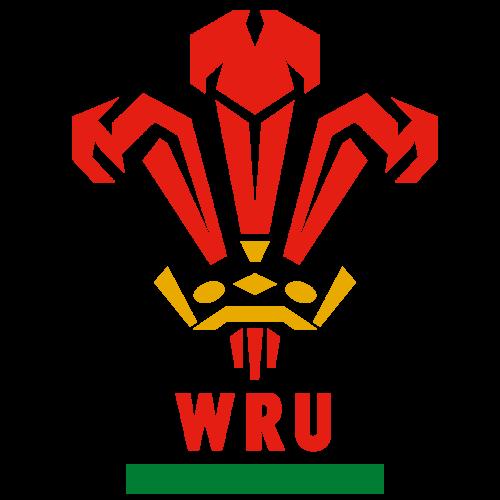 Maillot de match du Pays De Galles U18 N°24 porté saison 2010/2011