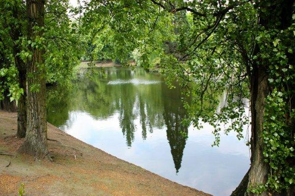 parc d'avroy ,mai 2010