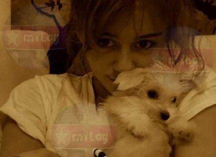 Miley et rien que Miley