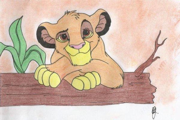 Simba terminé ^^