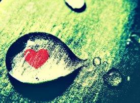 Avec toi, c'est la Saint Valentin tous les jours. Mon Amour...