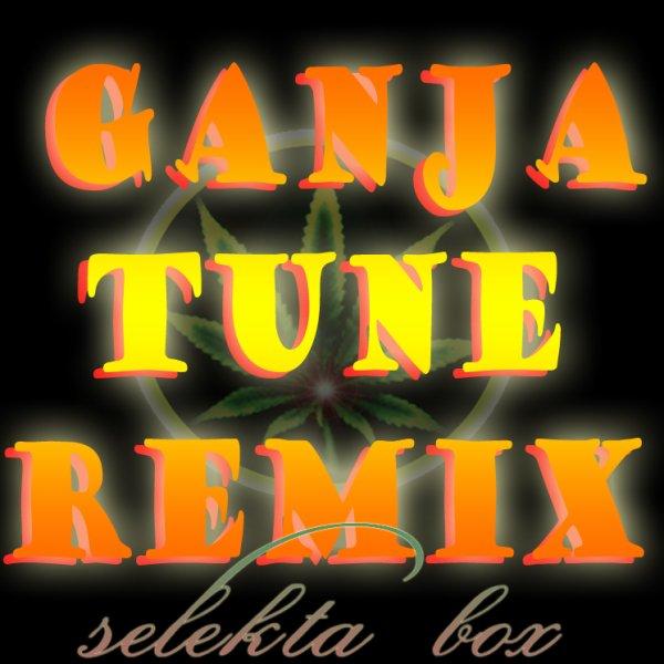 DELTA FT LIEUTENANT-GANJA TUNE REMIX DJ BOX 2012!!