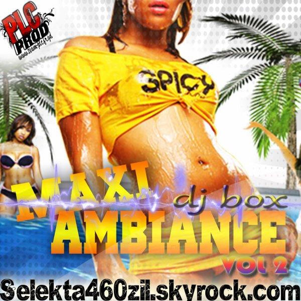 compile maxi ambiance vol 2