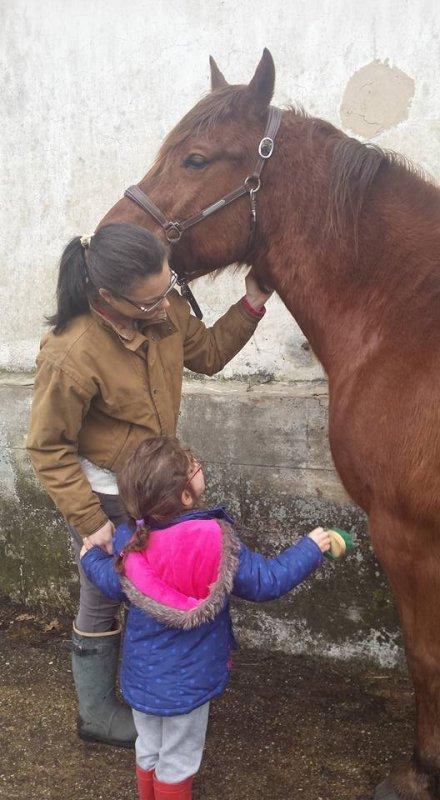 Je suis un amour de cheval