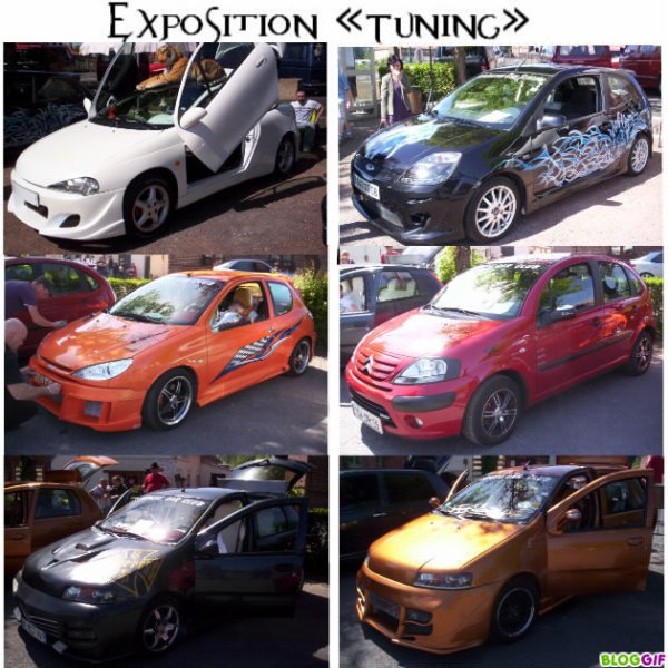 EXPO A BOUE.