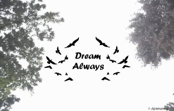 Nous avons tous des rêves ..  Faisons en sorte de les réaliser ♥