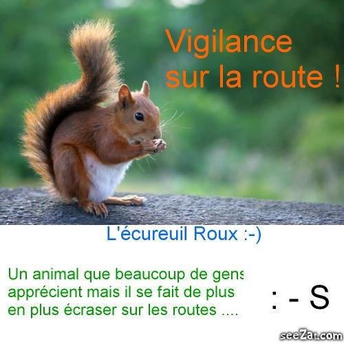 Soyez prudents sur la route; pour votre sécurité ... Et pour la leur !