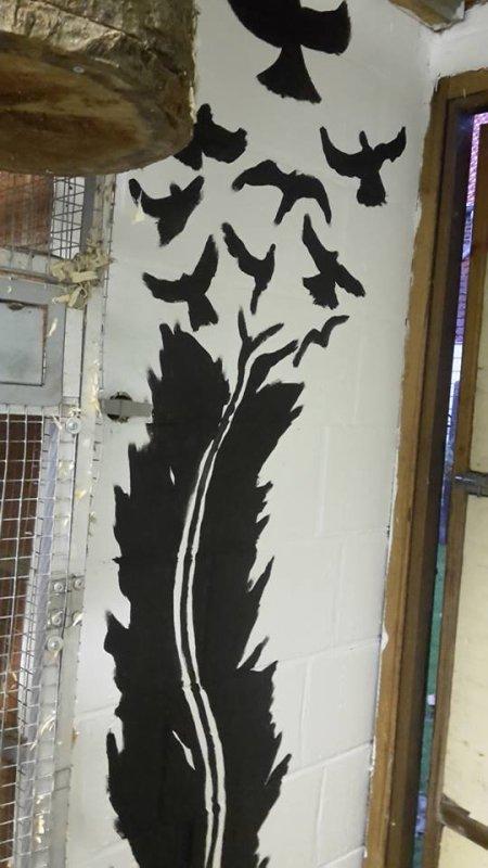 peinture interieur de mes volieres
