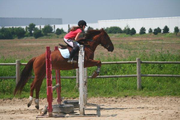 20 juin 2012 - Cours de saut d'obstacles ♥