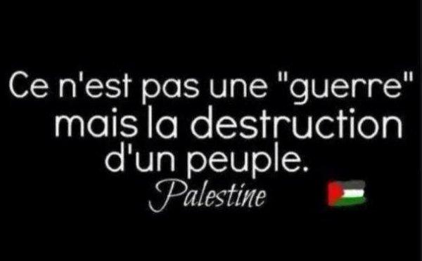 Une grosse pensée a tous les Palestiniens qui souffrent et qui subissent de gros bombardement en cet période de Ramadan ! Que Dieu leur vient en aide vue que l'être humain est mauvais