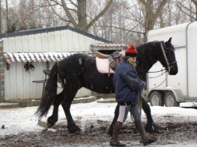 Travail à la longe.... sous la neige !!