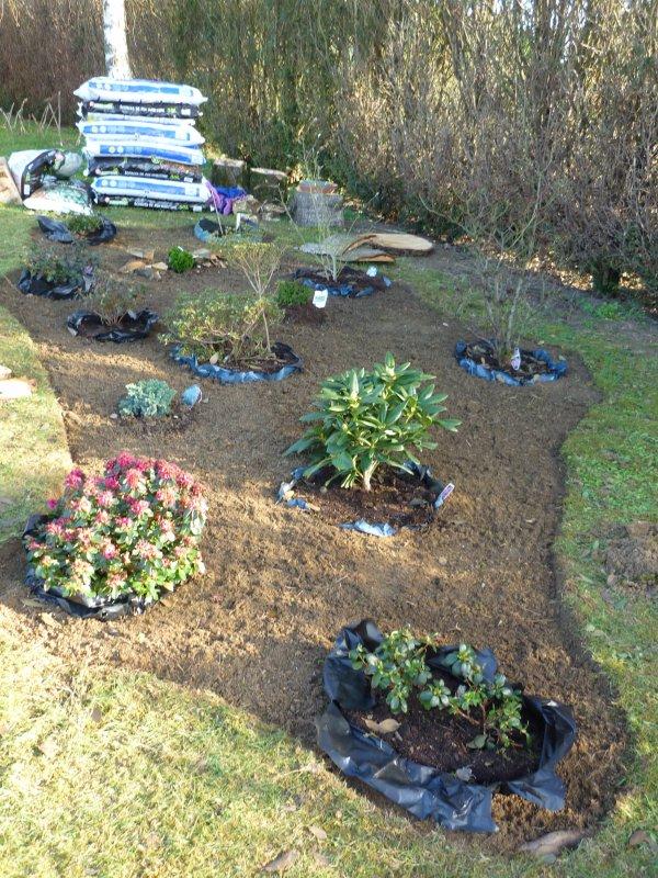 faire un massif de terre de bruy re vite au jardin. Black Bedroom Furniture Sets. Home Design Ideas