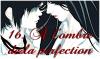 XVI - À l'ombre de la perfection